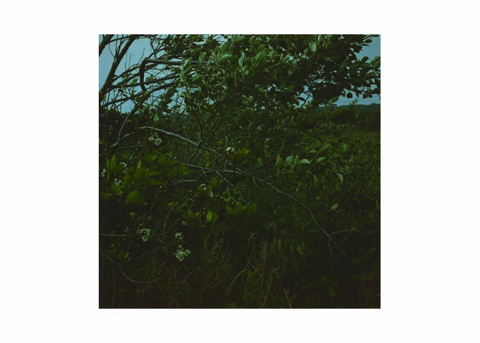湯沢薫の画像 p1_20